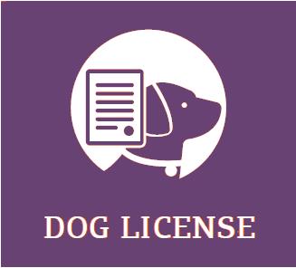 Dog Licences